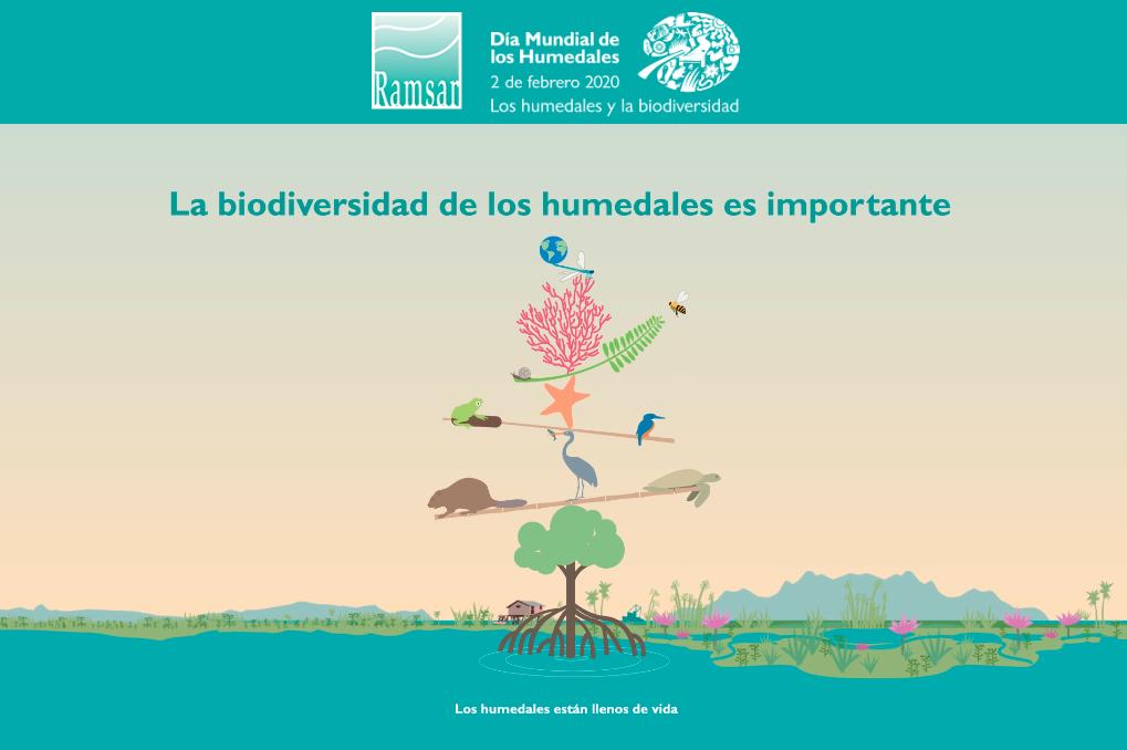 Imagen oficial del Día Mundial de los Humedales en la que se incluye el lema de este año.